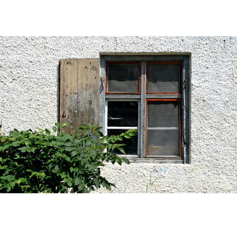 Window Shades